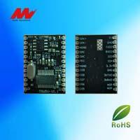 多语音控制模块TRW5V